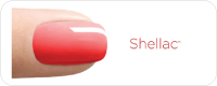Shellac Polish Logo